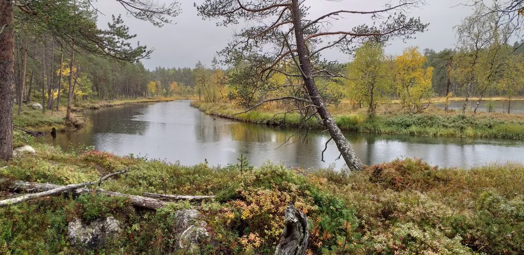 Syksyinen Kiertämäjoki Urho Kekkosen kansallispuiston erämaassa.